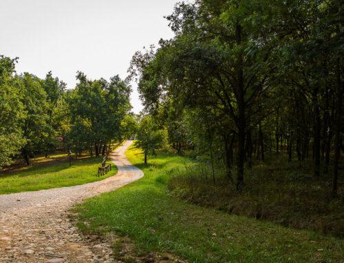 Il Parco Forestale del Roero a Sommariva Perno